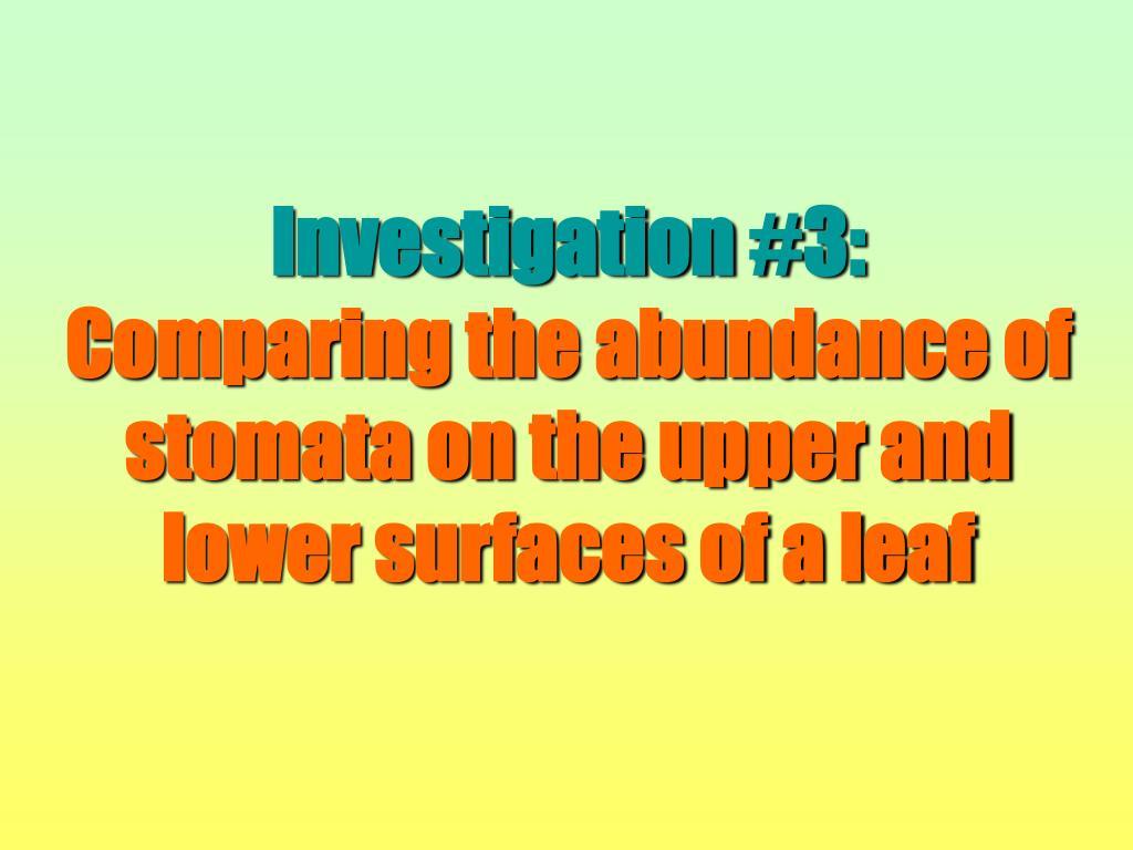 Investigation #3: