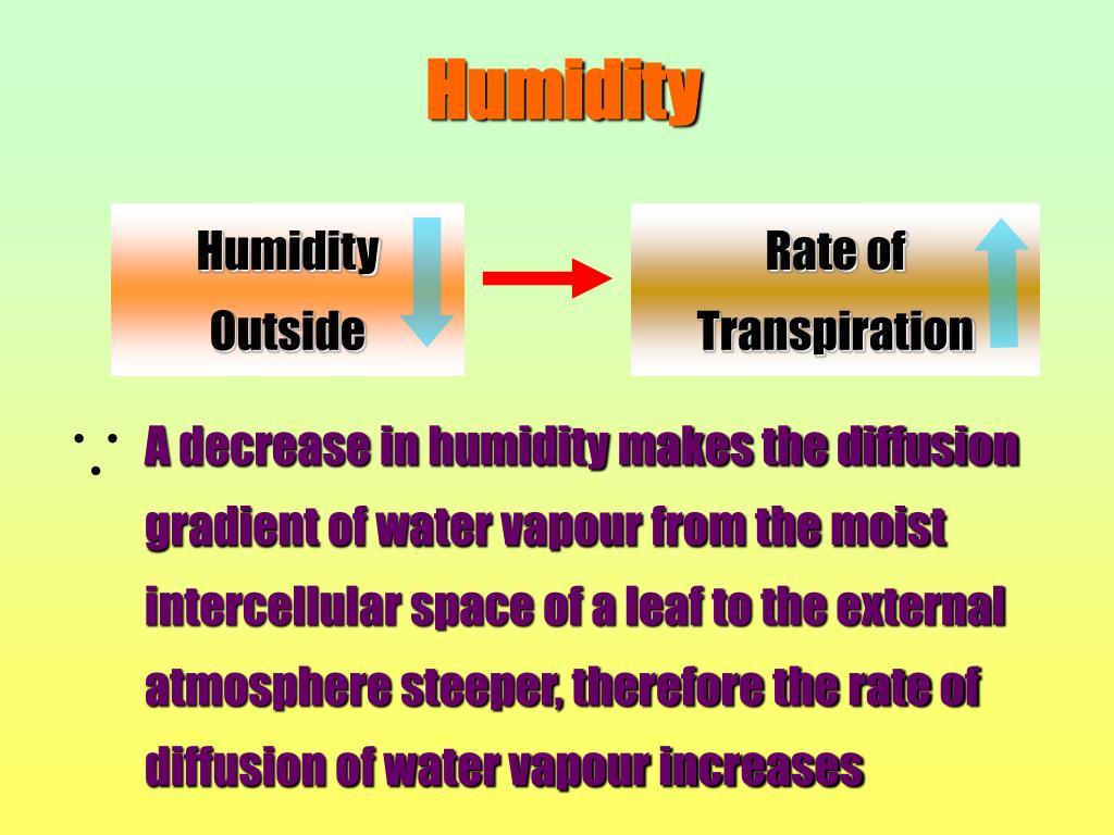 Humidity Outside