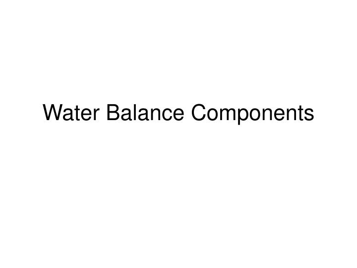 water balance components n.