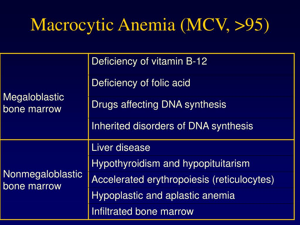 Macrocytic Anemia (MCV, >95)