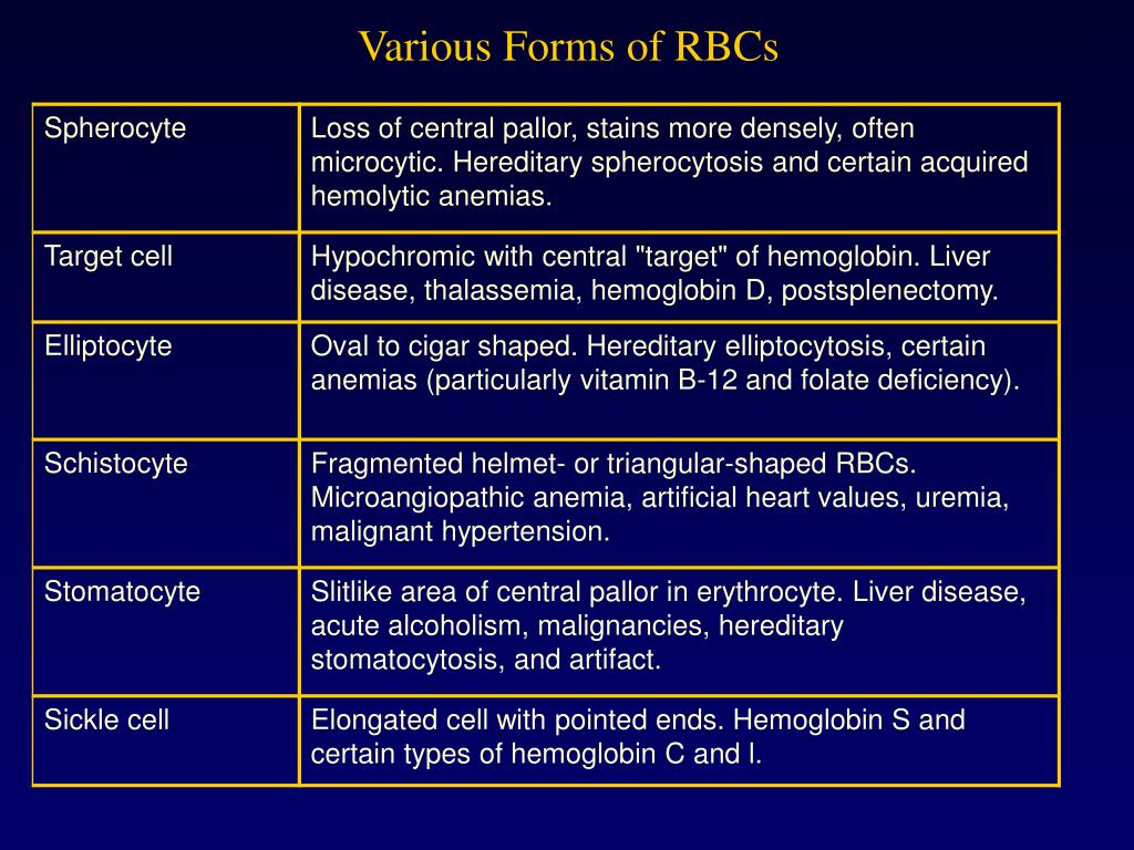 Various Forms of RBCs