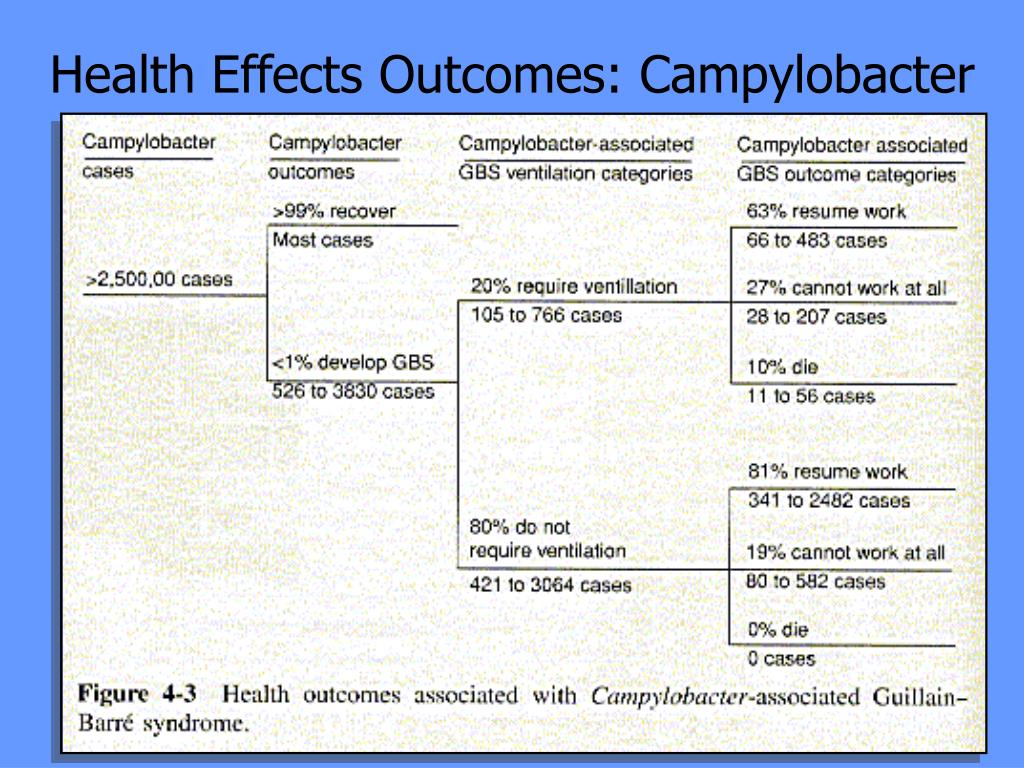 Health Effects Outcomes: Campylobacter