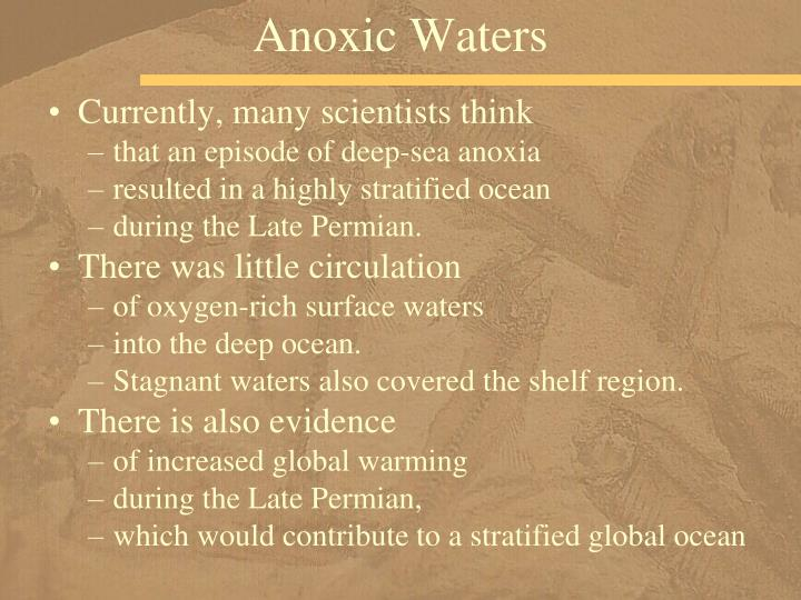 Anoxic Waters