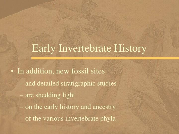 Early Invertebrate History