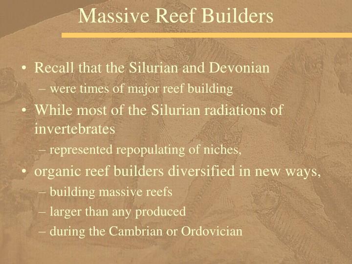 Massive Reef Builders