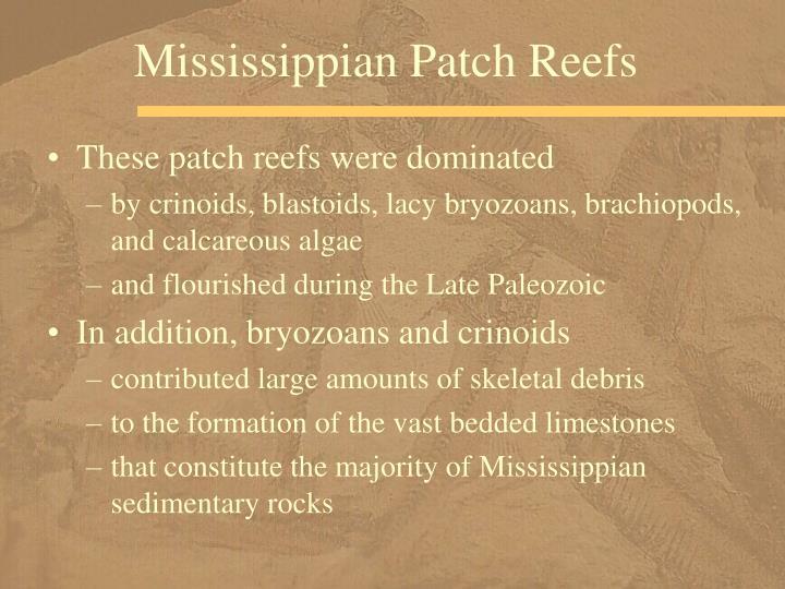 Mississippian Patch Reefs
