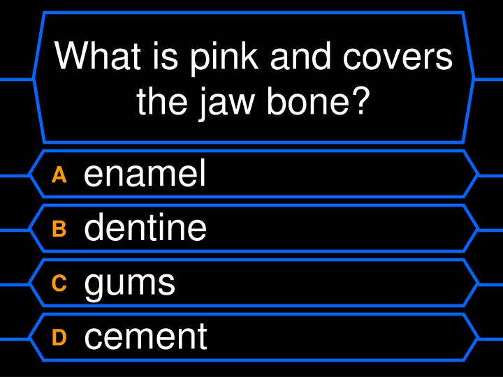What is pink and covers the jaw bone?