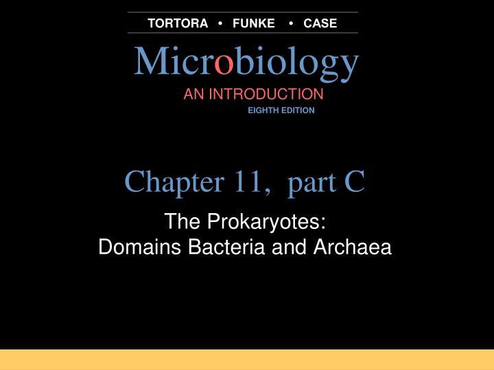 chapter 11 part c n.