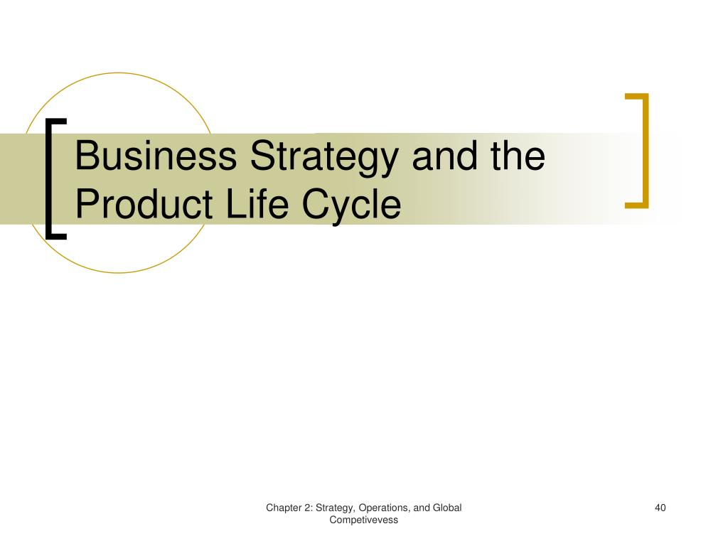 Business Strategy and the Product Life Cycle