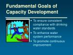 fundamental goals of capacity development