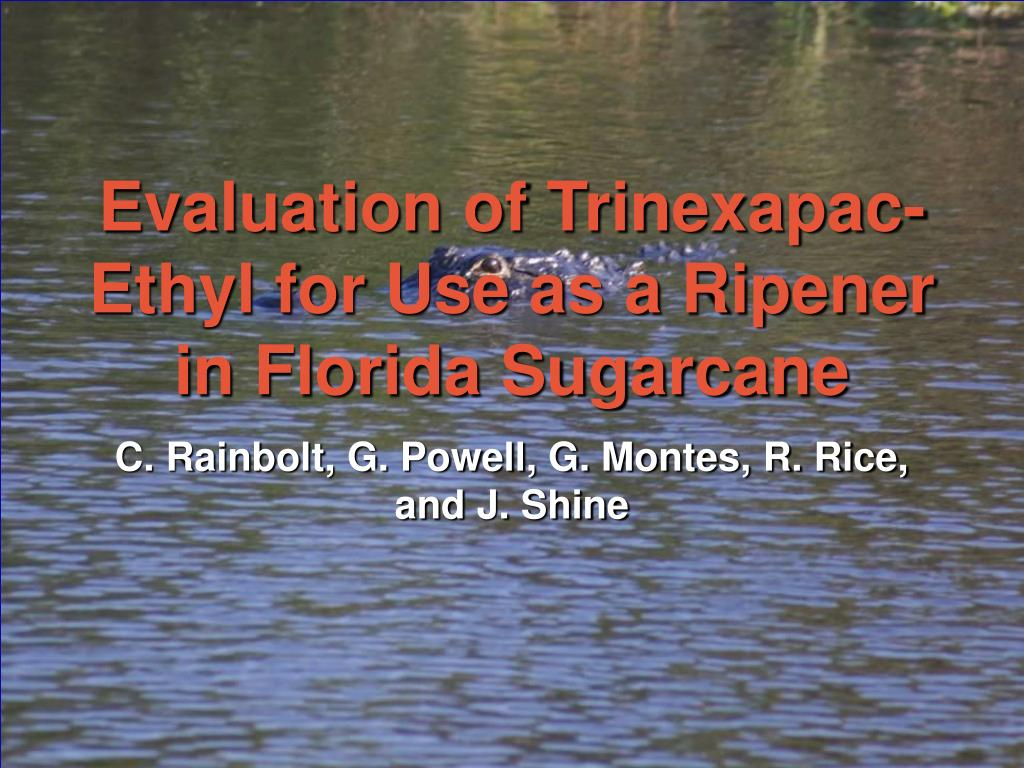 PPT - Evaluation of Trinexapac-Ethyl for Use as a Ripener in Florida