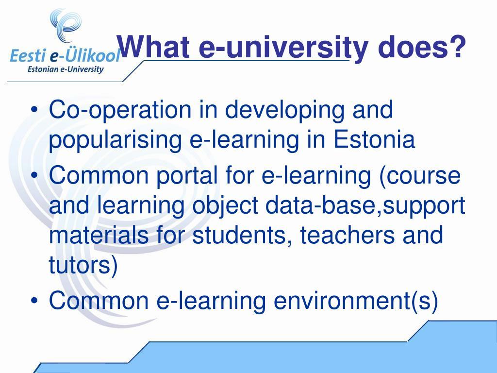What e-university does