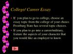college career essay
