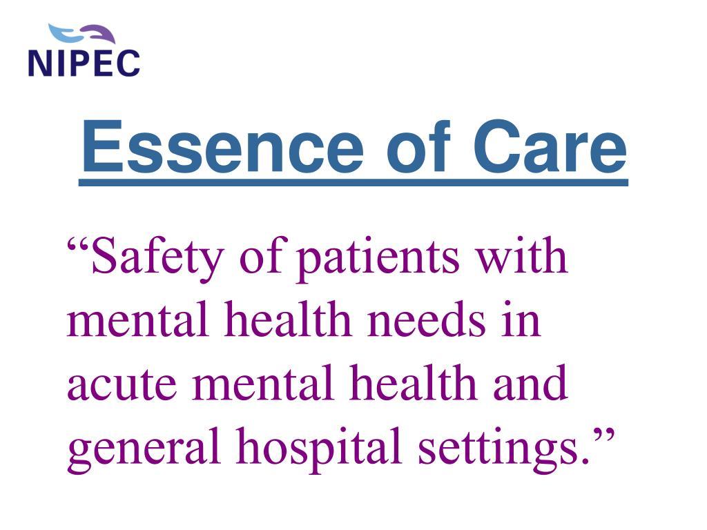 essence of care l.