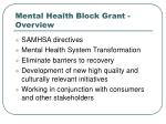 mental health block grant overview