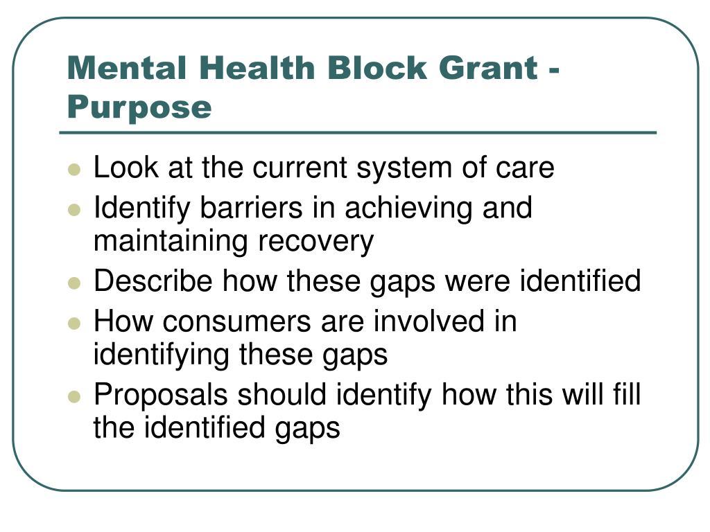 Mental Health Block Grant - Purpose