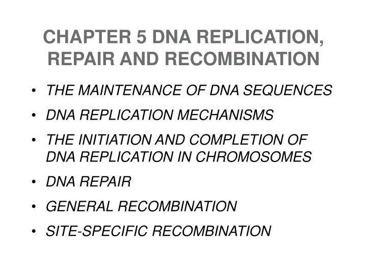 Chapter 5 dna replication repair and recombination