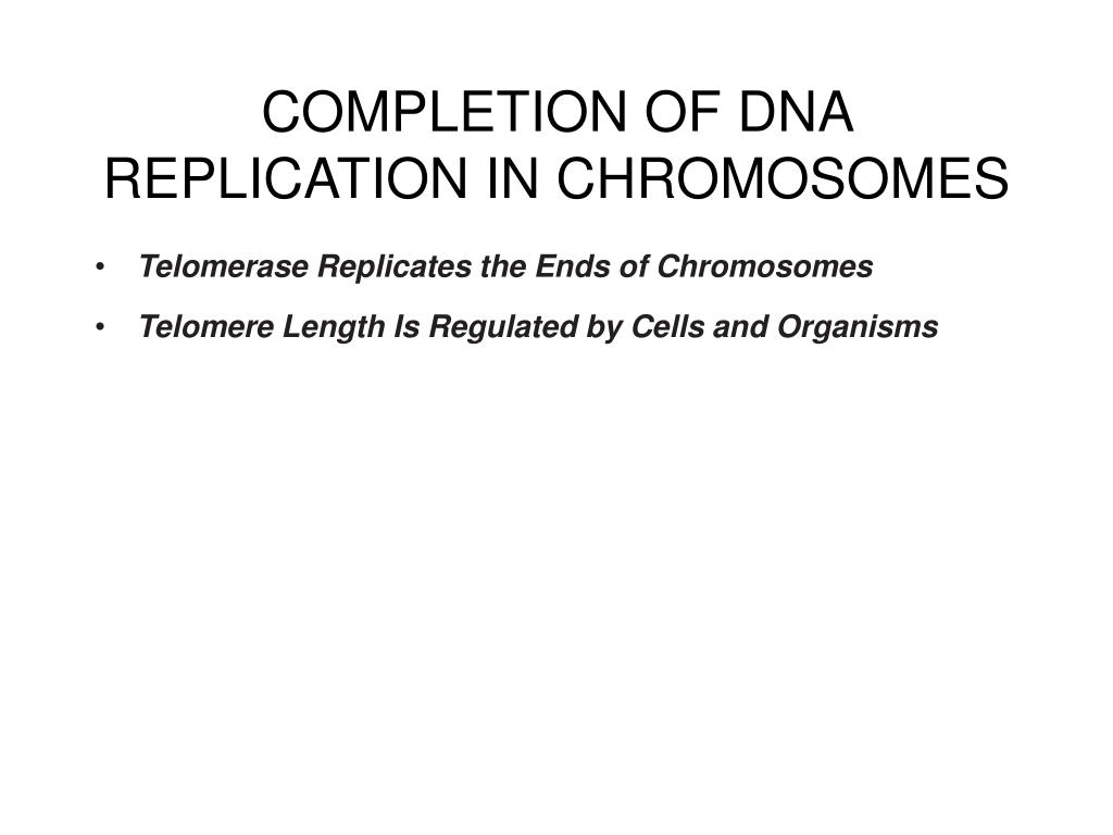 COMPLETION OF DNA REPLICATION IN CHROMOSOMES