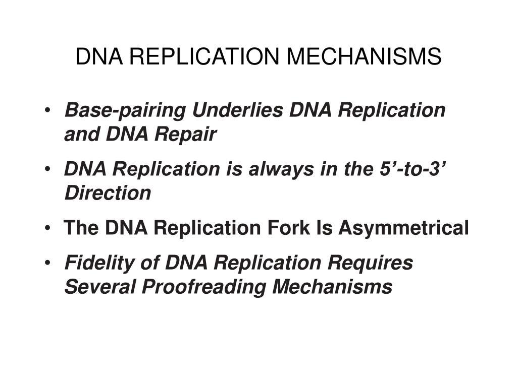 DNA REPLICATION MECHANISMS