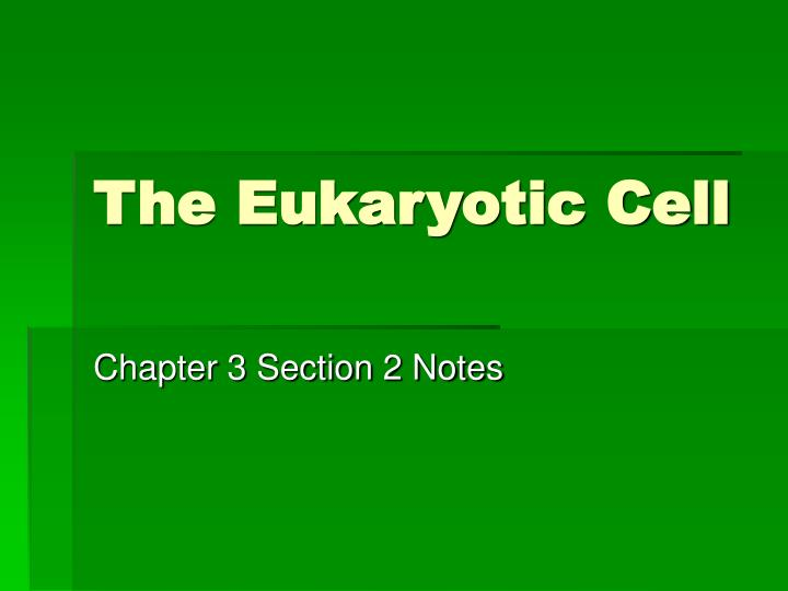 the eukaryotic cell n.