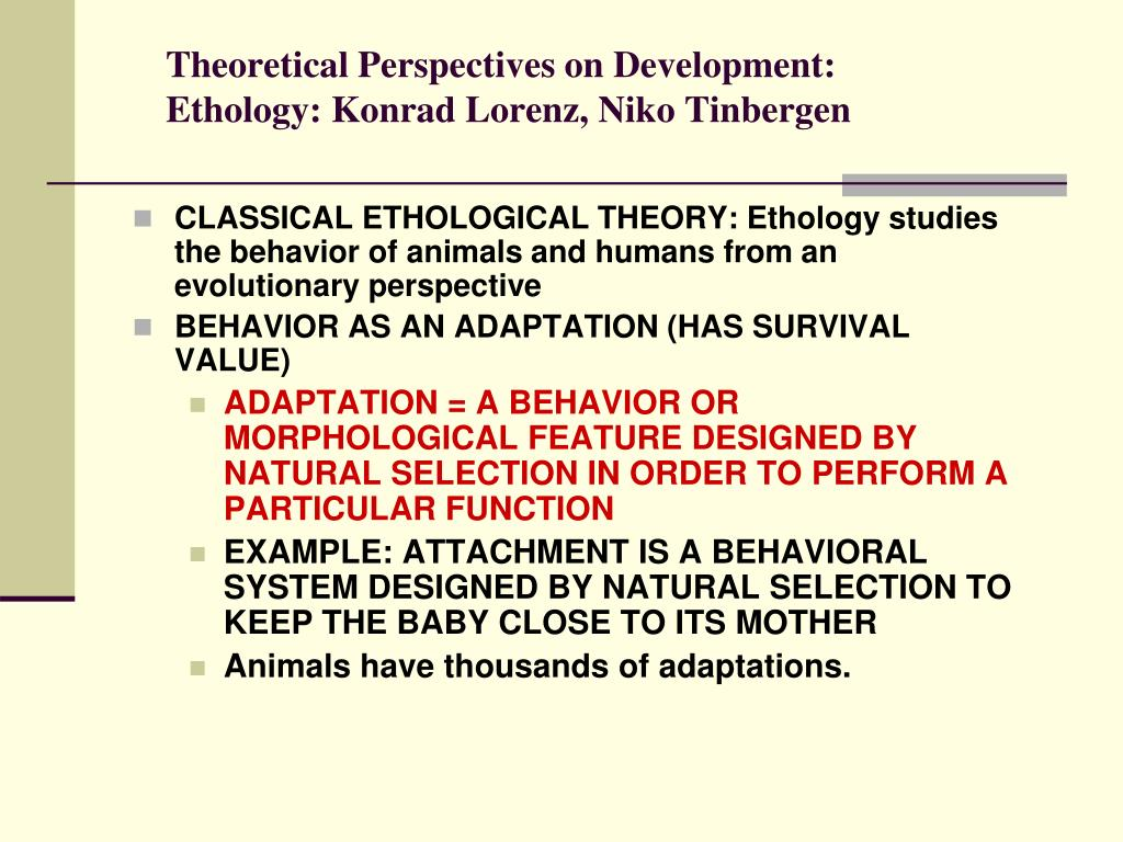 a study on theoretical perspectives in maladaptive behavior Behavioral perspective focuses on observable behavior and learning in the environment abnormal: learned maladaptive behaviors is the wrong question each major perspective emphasizes a different aspect of behavior not all aspects of any perspective are fully accurate.