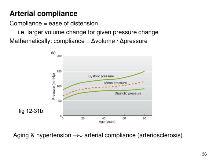 Vestibular evoked myogenic potentials test.