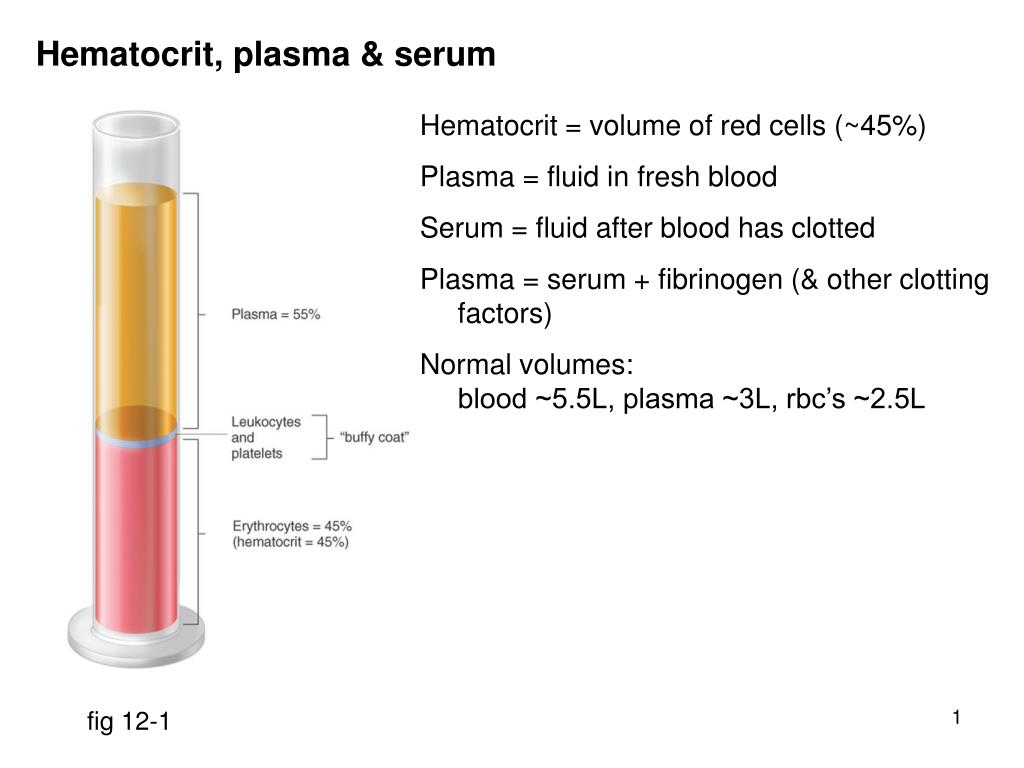 PPT - Hematocrit, plasma & serum PowerPoint Presentation
