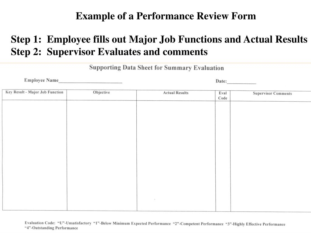 Example of a Performance Review Form