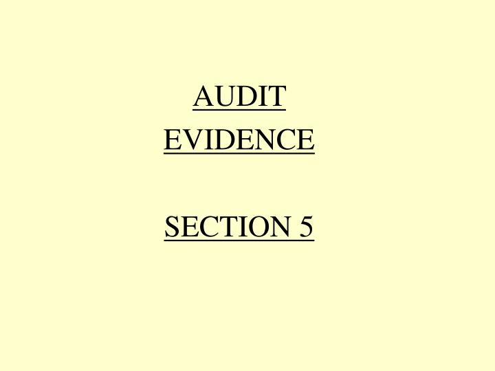 audit evidence section 5 n.