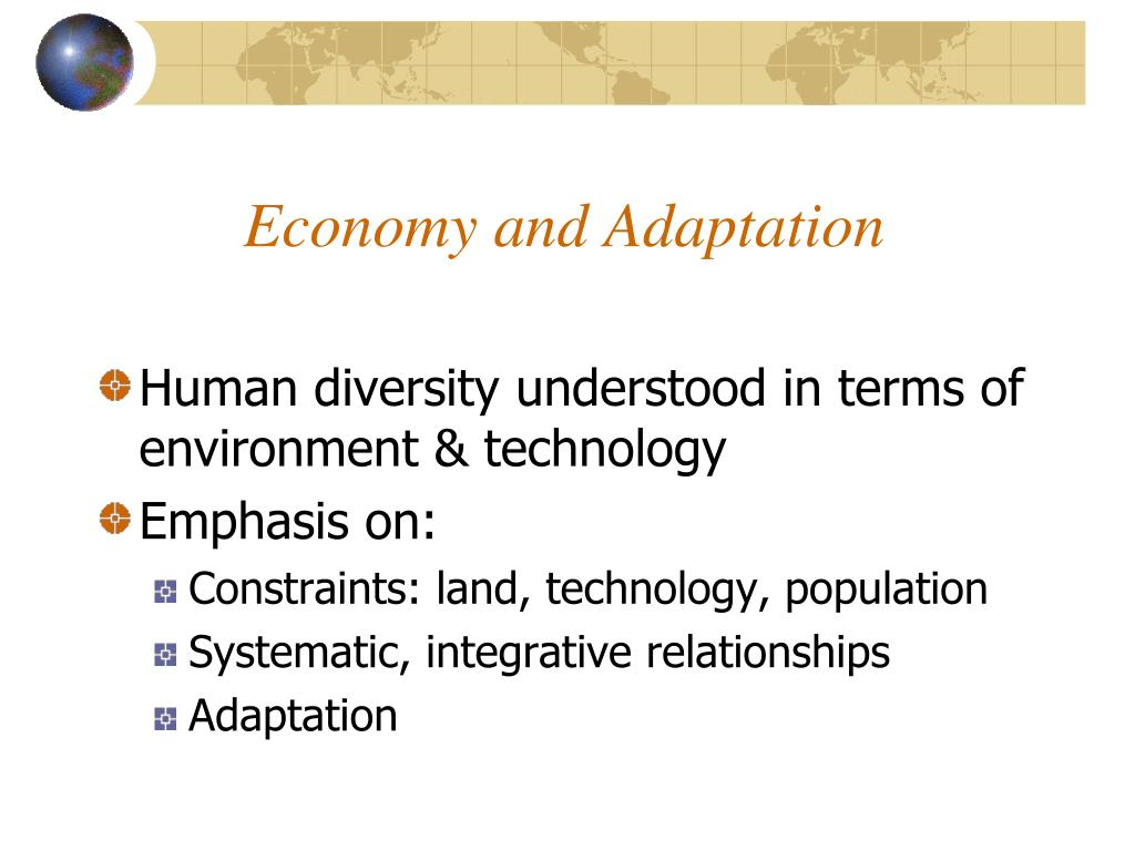 economy and adaptation l.