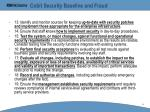 cobit security baseline and fraud42