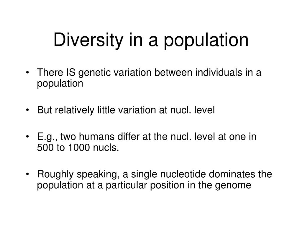 Diversity in a population