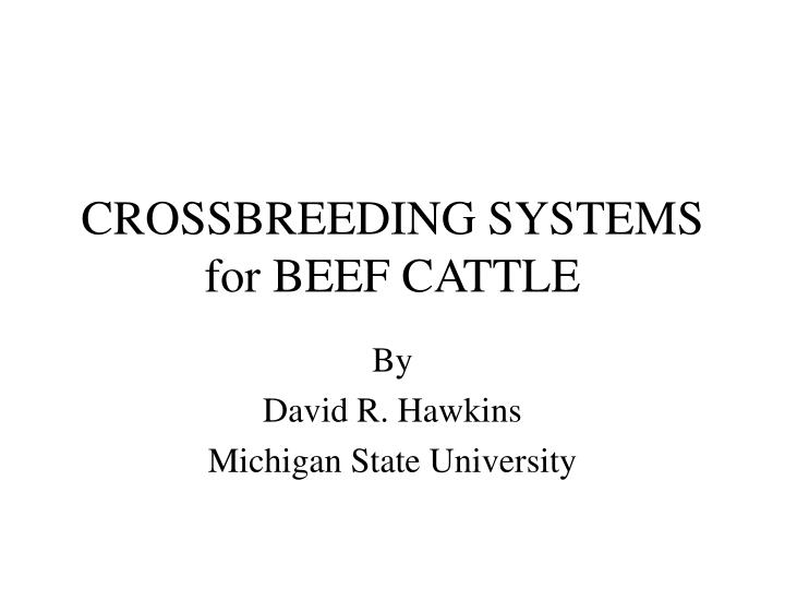 crossbreeding systems for beef cattle n.