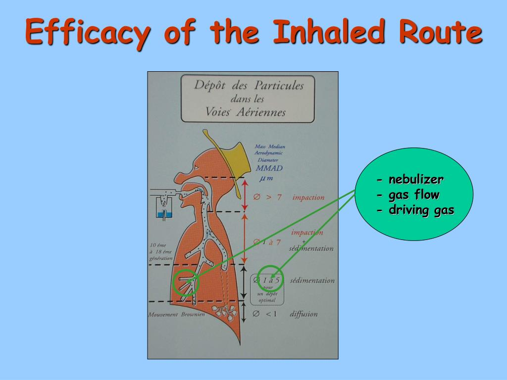 Efficacy of the Inhaled Route