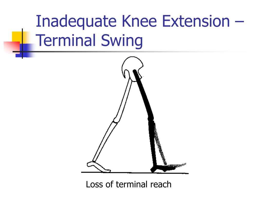 Inadequate Knee Extension – Terminal Swing