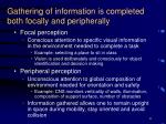 gathering of information is completed both focally and peripherally