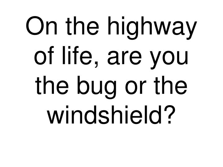 on the highway of life are you the bug or the windshield n.