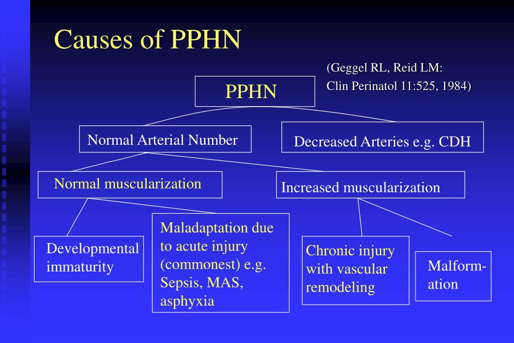 Causes of PPHN