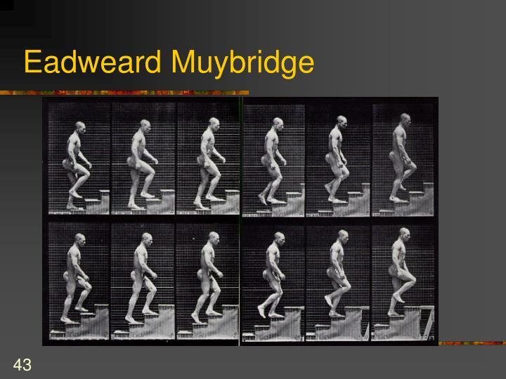 edweard muybridge