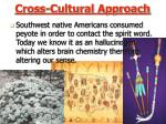 cross cultural approach