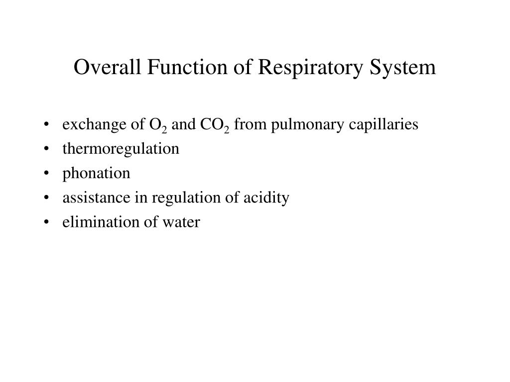 Ppt Overall Function Of Respiratory System Powerpoint Presentation