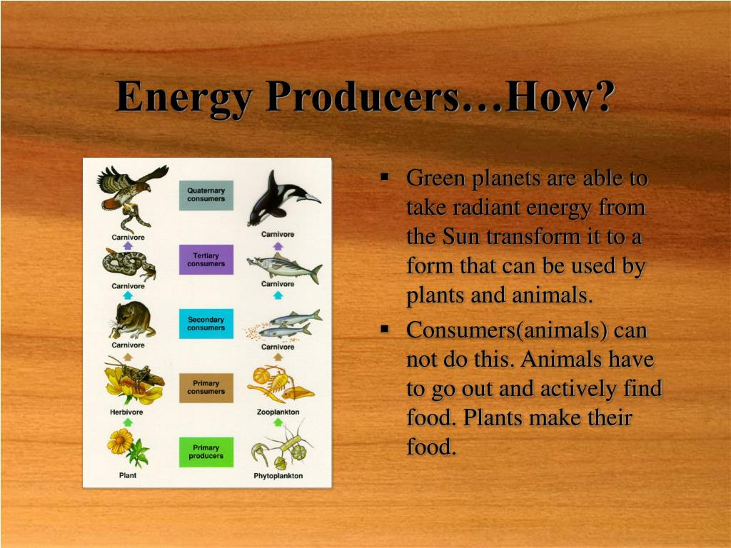 Energy Producers…How?