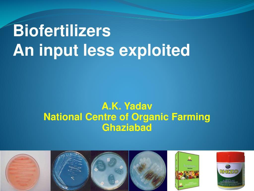 biofertilizers an input less exploited l.