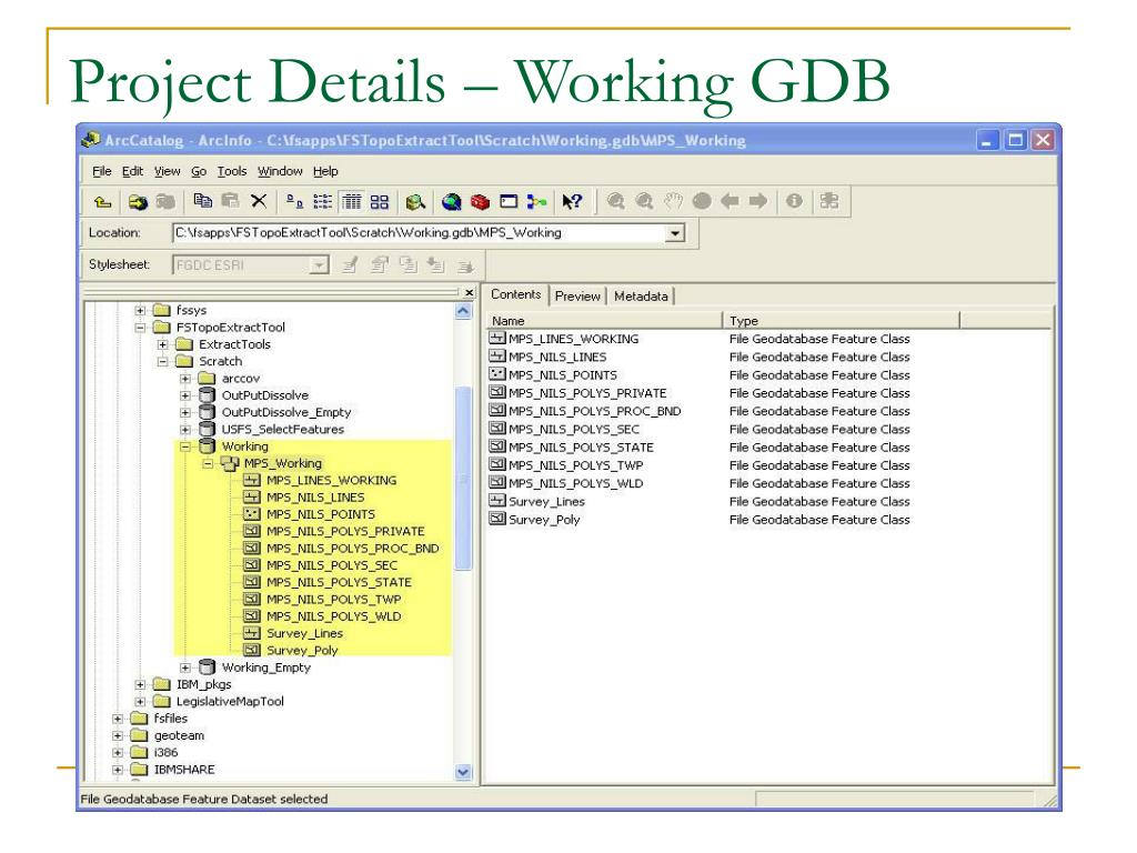 Project Details – Working GDB