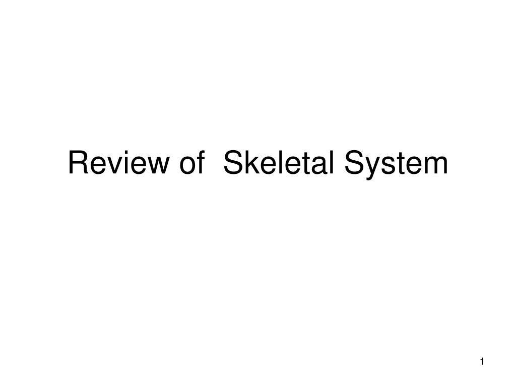 review of skeletal system l.