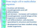 from single cell to multicellular organism