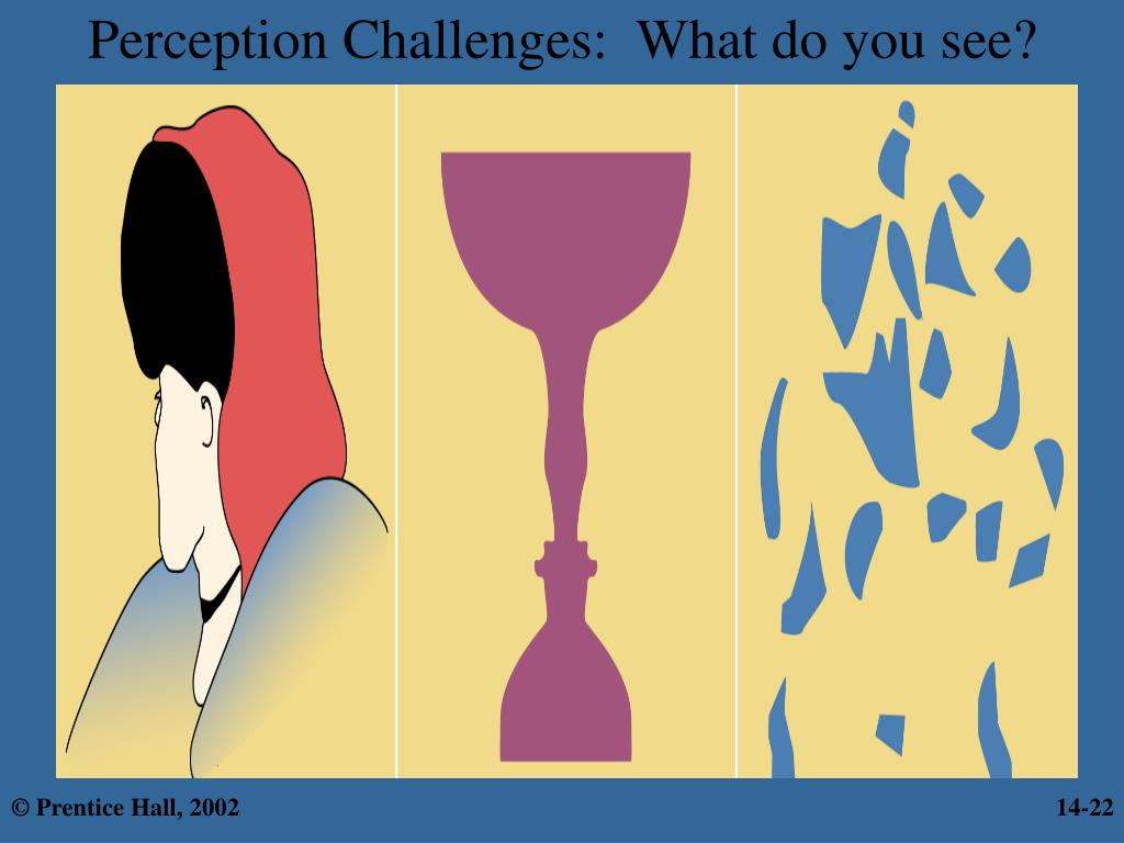Perception Challenges:  What do you see?