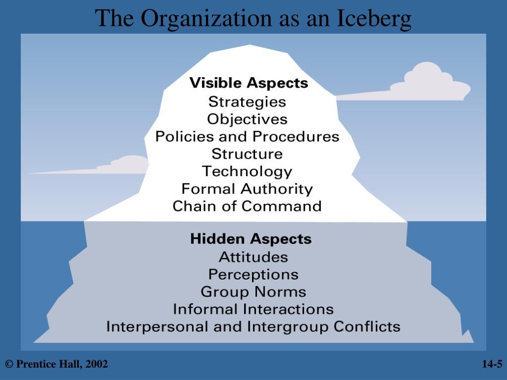 The Organization as an Iceberg