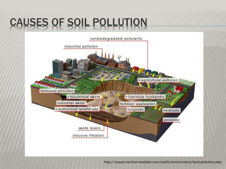 essay about causes and effects of soil pollution
