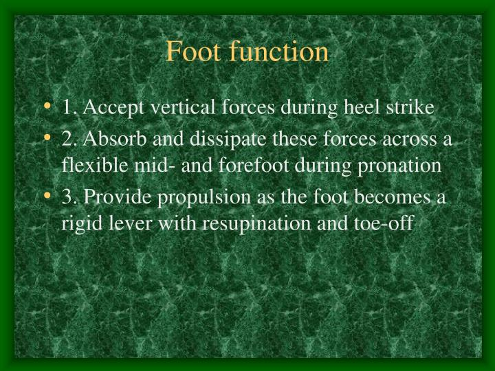 Foot function